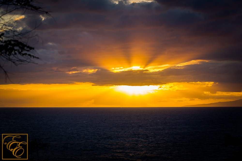 Golden Maui Beach Sunset